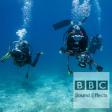 07051033 - (sfx) - Diving, sub aqua as heard by the diver.