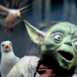 Bad Lip Reading - SEAGULLS! (Stop It Now) - Yoda - That's Good. Like that...like that...