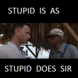 Forrest Gump (1994) - Stupid is as stupid does, sir
